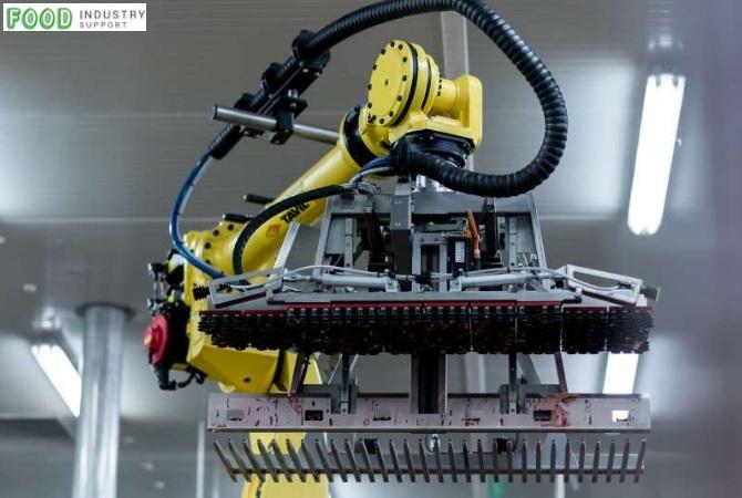 Jak roboty wspierają produkcję wyrobów mięsnych