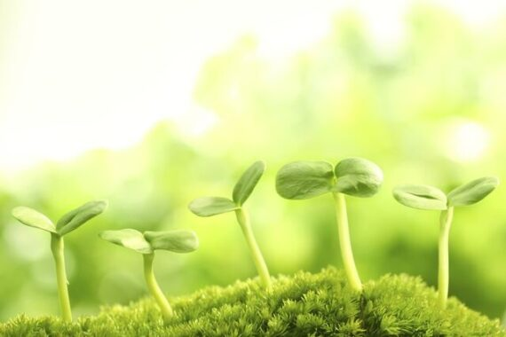 AirLiquide Tredndy w produkcji żywności - rynek wegetariański Food Industry Support